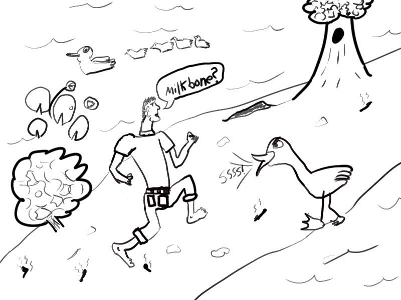 Gaggle of Geese Drawing i Ran to The Far End of The